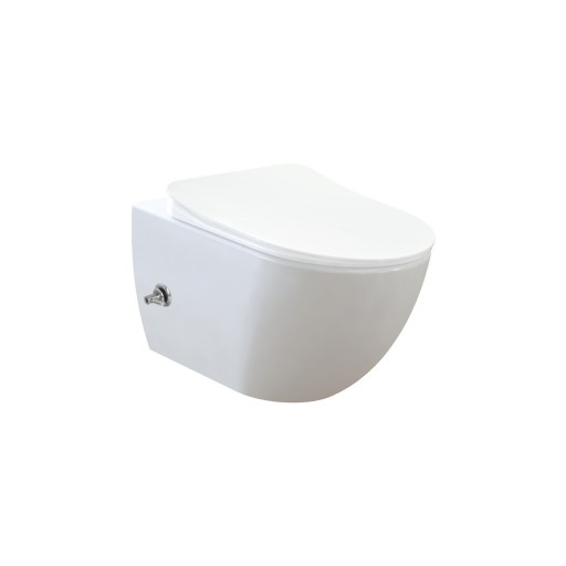 Creavit Free Wall Hung Combined Bidet Toilet - Integrated Hot & Cold On/Off Valve