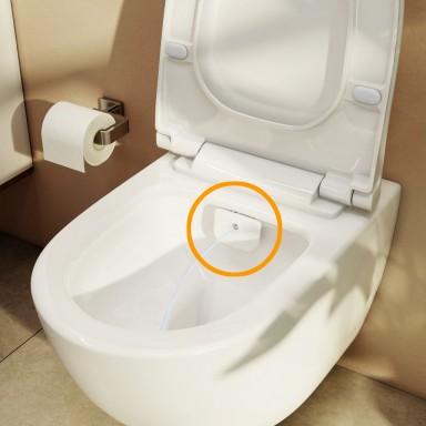 Combined Bidet Toilets